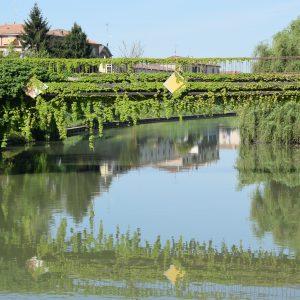 A Villa Mensa con Interno Verde