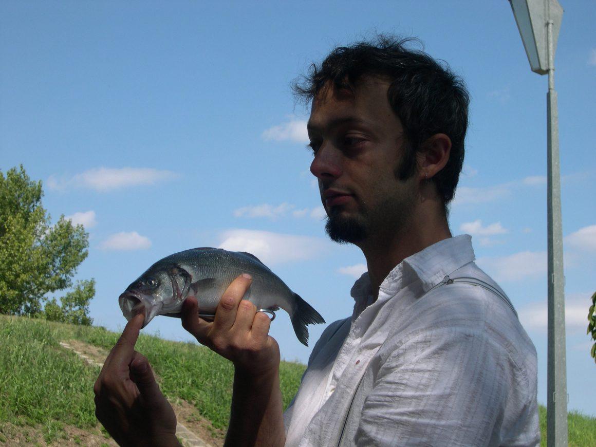 Il mistero dei pesci volanti